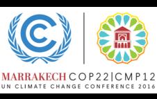 Autoridades locales y regionales, actores clave en la COP22