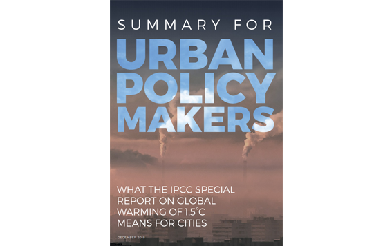 Summary for Urban Policy Makers