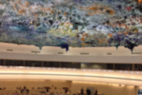 Local Governments UN Human Rights Council