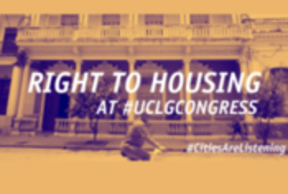 Mise en œuvre du droit au logement convenable : Nourrir les débats du Congrès de Durban et le prochain rapport de la Rapporteuse Spéciale de l'ONU