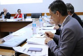 Dirección Ejecutiva aprueba acuerdos con otras organizaciones y mensaje de la Red para la Cumbre del Mercosur