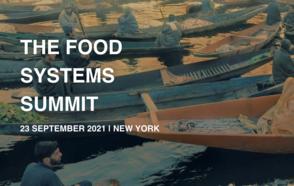 UN Food Systems Summit