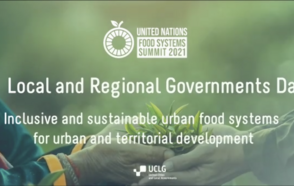 Towards the UN Food Systems Summit and Beyond