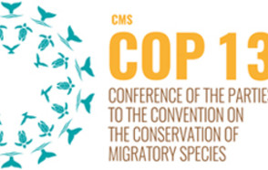 13th Session of the Conference of the Parties to the Convention on the Conservation of Migratory Species of Wild Animals 2020