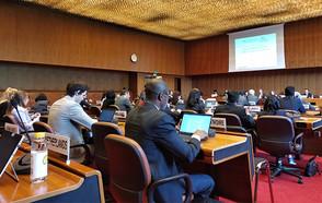 CGLU defiende el espacio de los gobiernos locales en el Pacto Mundial sobre Migración