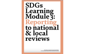 Learning Module 3: Reporting to national and local reviews