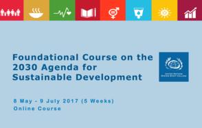 UCLG, UNDP and UN-Habitat co-organize a UNSSC webinar on SDG Localization