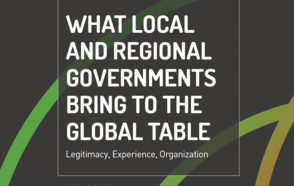 What local and regional governments bring to the global table