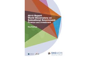 2019 Report SNG-WOFI Key Findings