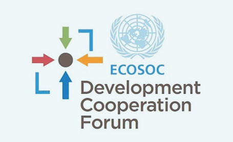Development Cooperation Forum