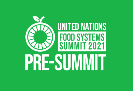 The right to food in cities and regions at the UN Food Systems Pre-Summit
