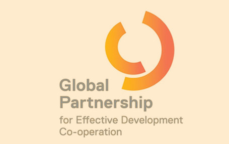 Local government development cooperation