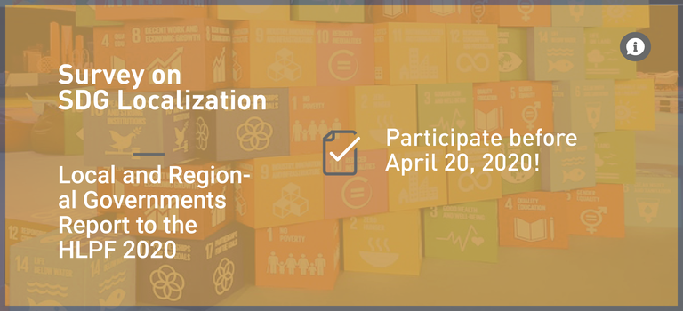 Survey on SDG Localization: LRG Report to the HLPF 2020