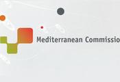 Commission Méditerranée de CGLU