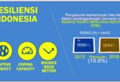 Diapositiva sobre el Indice de Riesgo de Desastres desarrollado en Indonesia. Resalta los aspectos de capacidad de adaptación, capacidad de resistencia/respuesta, y mejor recuperación