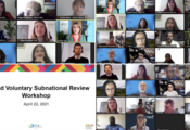 Voluntary Subnational Review Workshops